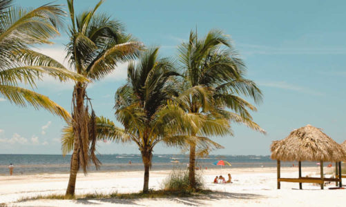 10 Best Things to Do in Fort Myers Florida | A First Timer's Guide