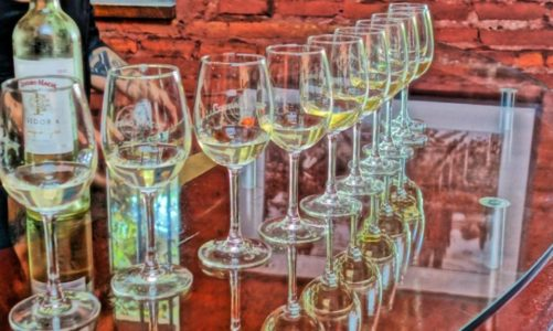 Best Chile Wine Tours on a Budget | For Wine Lovers