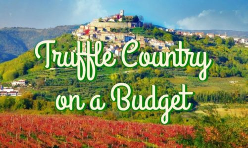 Motovun Istria | Best Places to Taste Truffle in Croatia and the World!