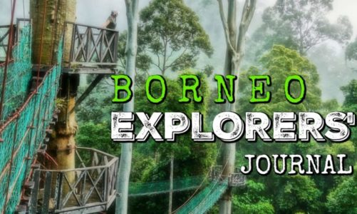 Exploring Borneo Island   Best Things to Do and See in Borneo!