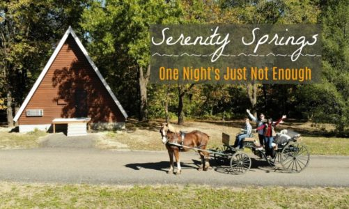 Serenity Springs in La Porte, IN | One Night's Just Not Enough