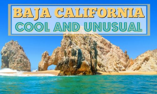 Baja California Peninsula   7 Cool and Unusual Things to See and Do