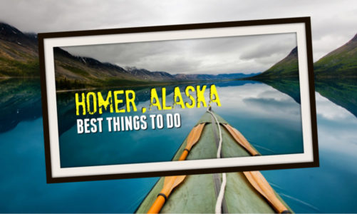 5 Best Things to Do in Homer Alaska | Wildlife Attractions & Scenic Drives