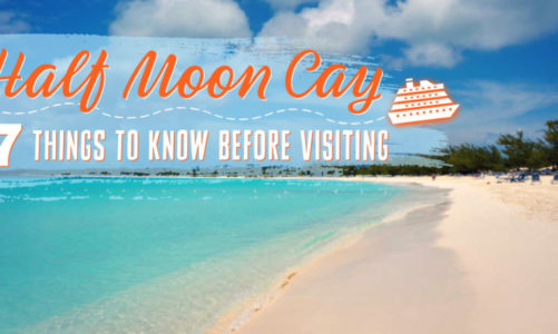 7 Things to Know Before Visiting Half Moon Cay   Is It Worth the Money?