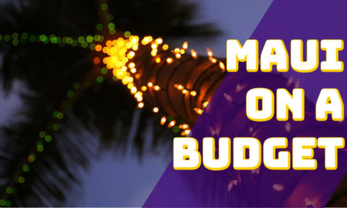 Visit Maui on a Budget   Plan a Christmas Vacation in Hawaii on the Cheap