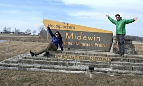Best Places to See Illinois Wildlife   Ultimate Spots for Animal Lovers