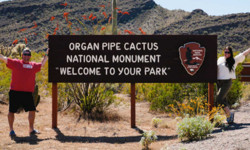 9 Things to Do in Organ Pipe Cactus National Monument