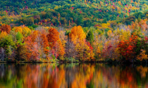 6 Best Places To See Fall Foliage in the US 🍁 Look at All the Colors