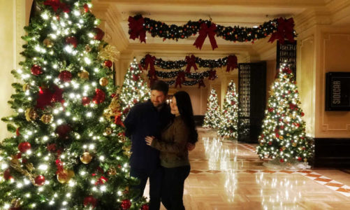 St Louis Missouri | Best Places to Take Holiday Photos in the City!