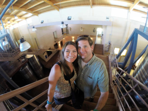 NQN Winery Tour Best Patagonia Wine Tours
